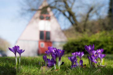 Frühling auf der LepperMühle