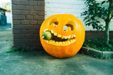 Kürbisköpfe zu Halloween
